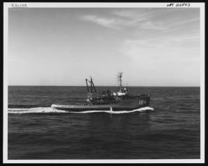USS Kalmia underway on 16 January 1964. NH 102803 (NHHC photo).